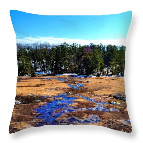 Water Throw Pillow featuring the photograph Wilderness Tree Line In Snow by James Potts