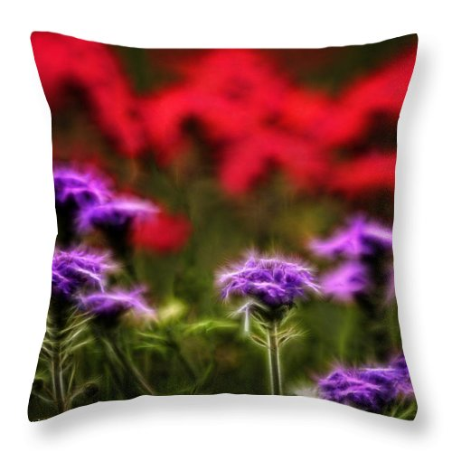 Verbena Throw Pillow featuring the photograph Wildflower Fantasy by Lucy VanSwearingen