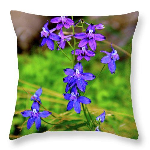 Oregon Throw Pillow featuring the photograph Wildflower Larkspur by Ed Riche