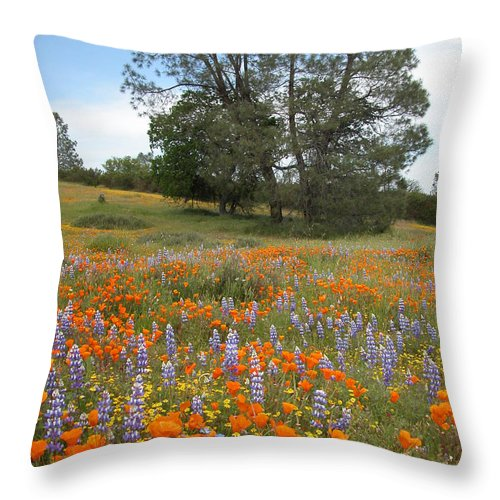 Wildflowers Throw Pillow featuring the photograph Wildflower Wonderland 3 by Lynn Bauer