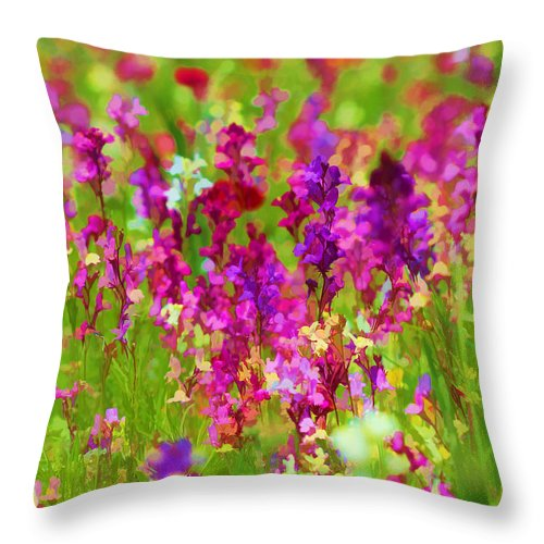 Wildflowers Throw Pillow featuring the photograph Wildflowers by Beth Fox