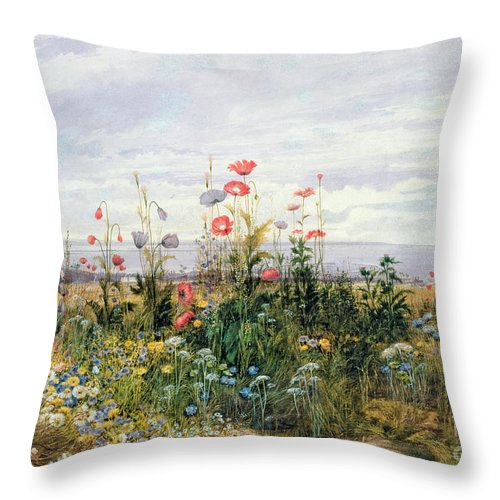 Meadow; Flowers; Irish; Wild; Landscape; Poppies Throw Pillow featuring the painting Wildflowers With A View Of Dublin Dunleary by A Nicholl