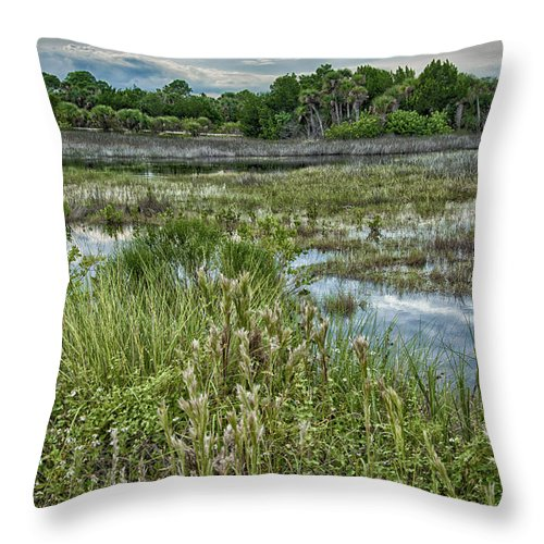 Wildlife Refuge Throw Pillow featuring the photograph Wildlife Refuge Reflections by Louise Hill