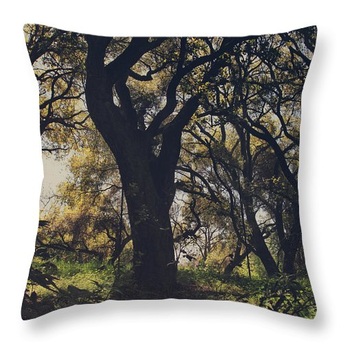 Dry Creek Hills Regional Park Throw Pillow featuring the photograph Wildly and Desperately My Arms Reached Out to You by Laurie Search