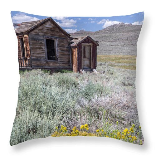 Green Throw Pillow featuring the photograph Will Exist Forever by Jon Glaser