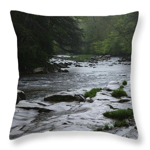 Williams River Throw Pillow featuring the photograph Williams River Rain Downpour by Thomas R Fletcher