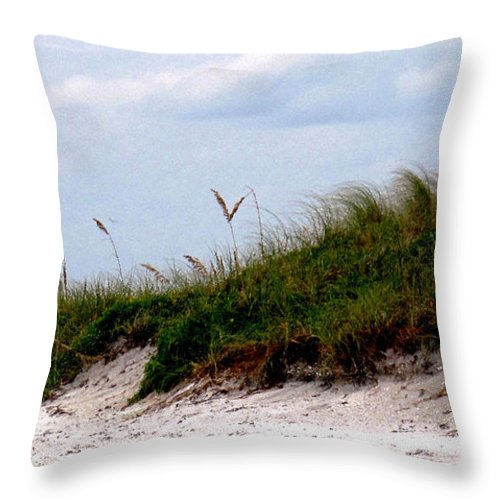 Beach Throw Pillow featuring the photograph Wind In The Seagrass by Ian MacDonald