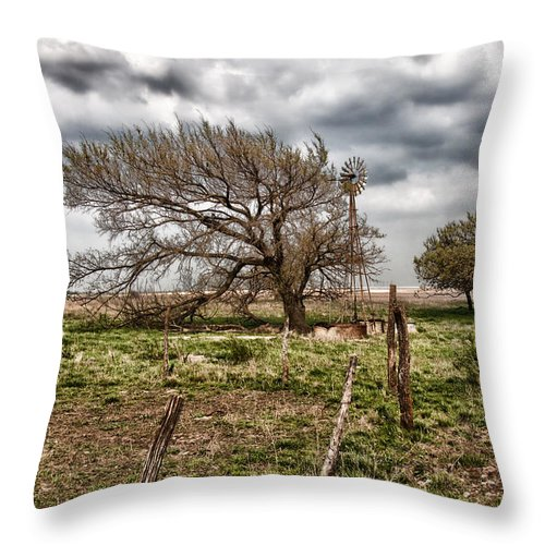 Alone Throw Pillow featuring the photograph Wind Swept Kansas Tree by Jim Finch