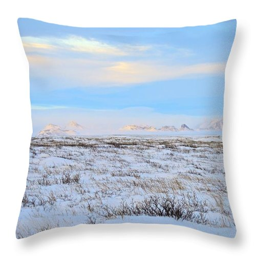 Landscape Throw Pillow featuring the photograph Wind Swept Plains Of Iceland by Eric Reger