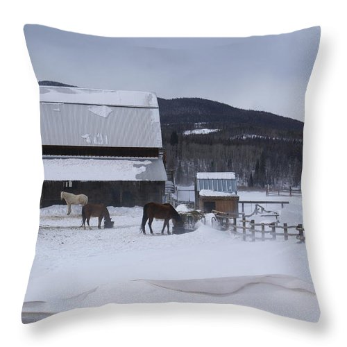 Winding River Ranch Throw Pillow featuring the photograph Winding River In Winter Grand Lake Co by Jacqueline Russell