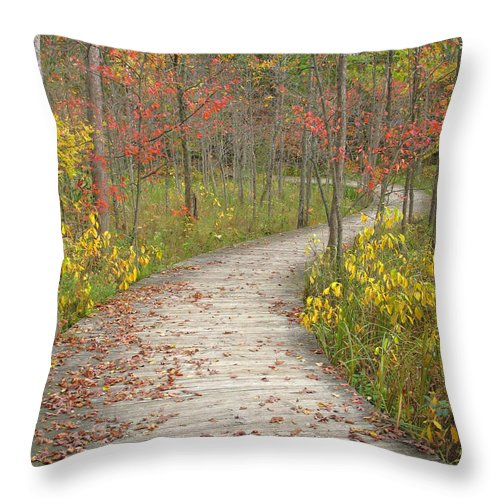 Autumn Throw Pillow featuring the photograph Winding Woods Walk by Ann Horn