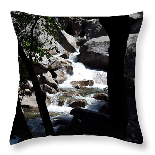 Trees Throw Pillow featuring the photograph Window Into Time by Brian Williamson