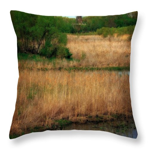 Windmill Island Throw Pillow featuring the photograph Window On The Waterfront Dezwaan Windmill by Michelle Calkins