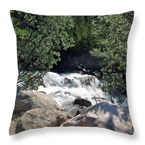 Window To A Stream Throw Pillow featuring the photograph Window To A Stream by JP McKim