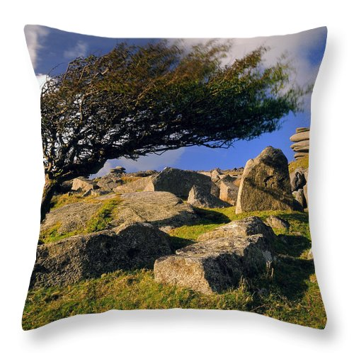 Landscape Throw Pillow featuring the photograph Windswept Hawthorn Tree by Darren Galpin