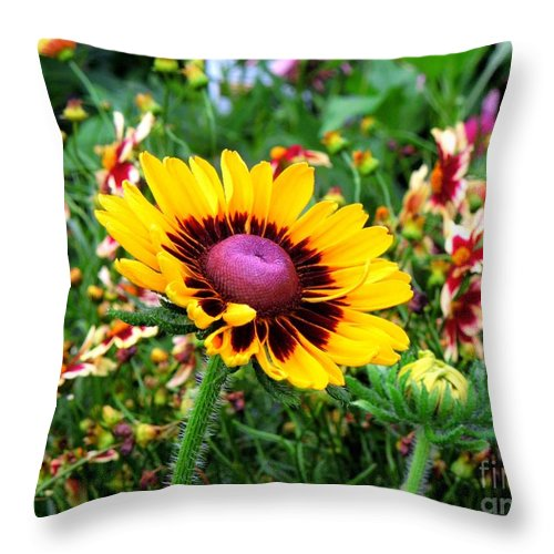 Flower Throw Pillow featuring the photograph Windy Day by Renee Trenholm