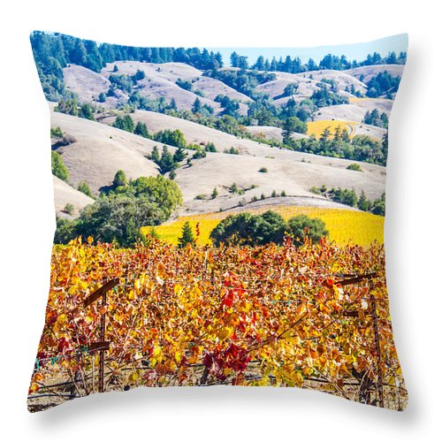 Hills Wine Grapes Throw Pillow featuring the photograph Wine Country Napa C.a. by Brian Williamson
