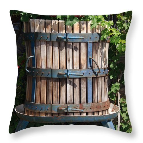 Agriculture Throw Pillow featuring the photograph Wine Press by Antonio Scarpi