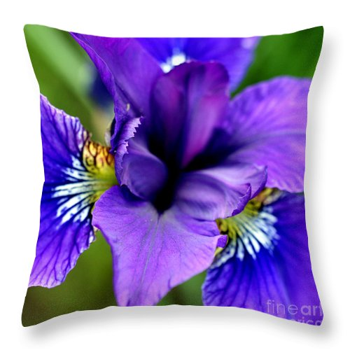 Iris Throw Pillow featuring the photograph Wings I by Valerie Fuqua