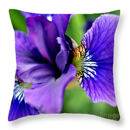 Iris Throw Pillow featuring the photograph Wings II by Valerie Fuqua