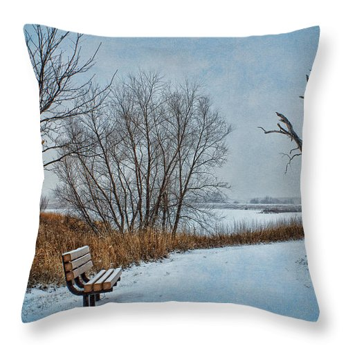 Bench Throw Pillow featuring the photograph Winter Bench At Walnut Creek Lake by Nikolyn McDonald