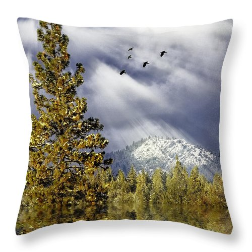 Winter Throw Pillow featuring the photograph Winter Blessings by Diane Schuster