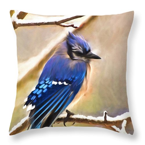 Blue Jay Throw Pillow featuring the photograph Winter Blue by Kerri Farley