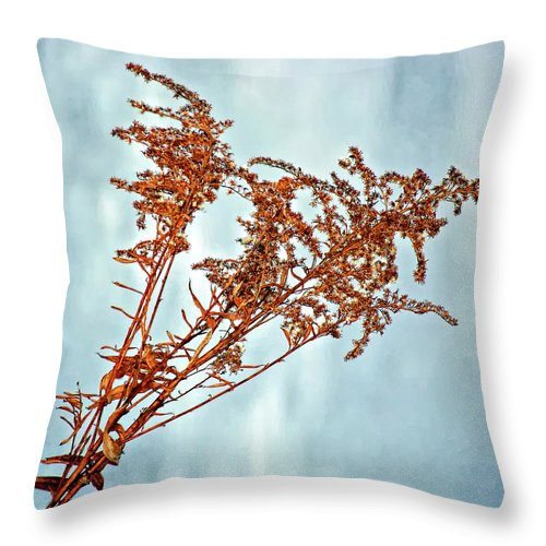 Weed Throw Pillow featuring the photograph Winter Bouquet by Steve Harrington