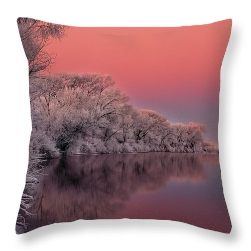 Idaho Throw Pillow featuring the photograph Winter Color by Leland D Howard