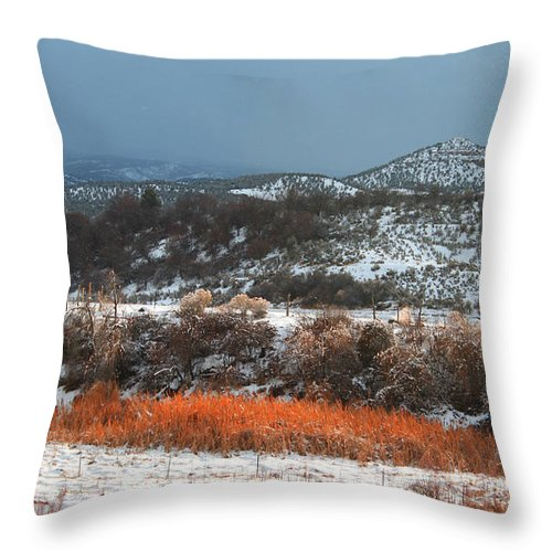 Roena King Throw Pillow featuring the photograph Winter Colors 3 by Roena King