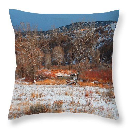 Roena King Throw Pillow featuring the photograph Winter Colors by Roena King