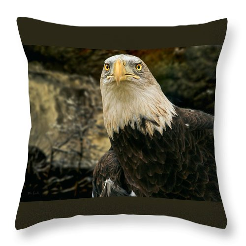 Eagle Throw Pillow featuring the photograph Winter Eagle by Bob Orsillo