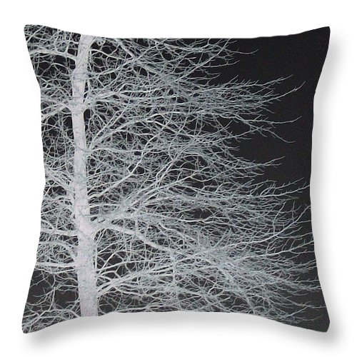 Trees Throw Pillow featuring the digital art Winter Etching by Wide Awake Arts