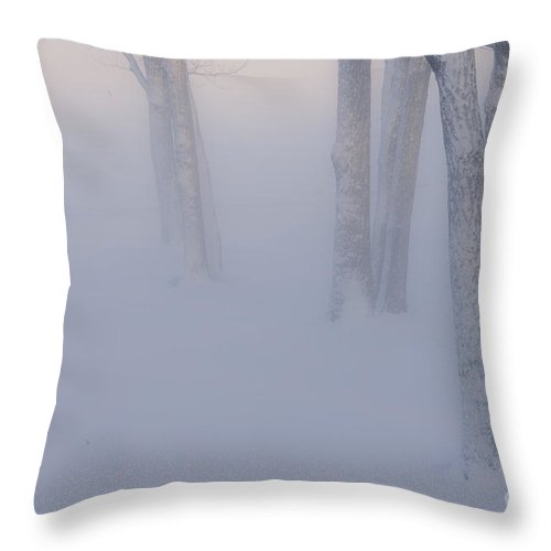 Hokkaido Throw Pillow featuring the photograph Winter Fog by John Shaw