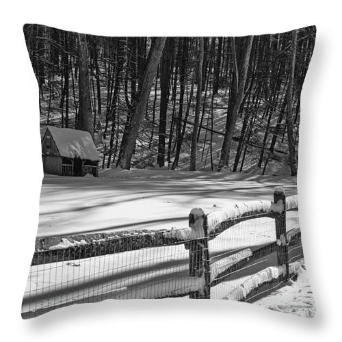 Paul Ward Throw Pillow featuring the photograph Winter Hut In Black And White by Paul Ward