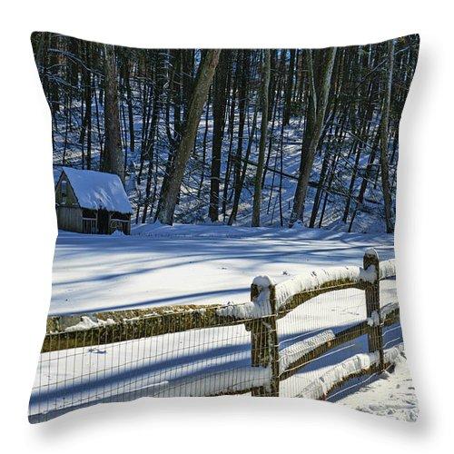 Paul Ward Throw Pillow featuring the photograph Winter Hut by Paul Ward