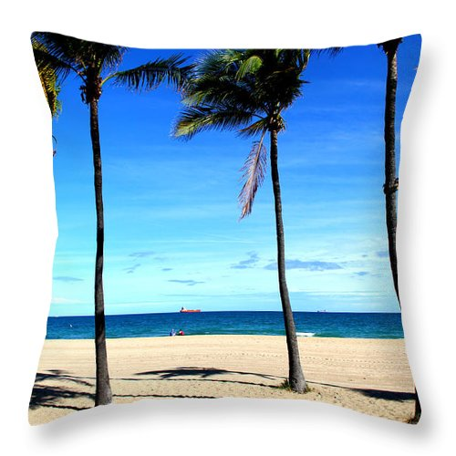 Florida Throw Pillow featuring the photograph Winter In Florida by Bobby Cole