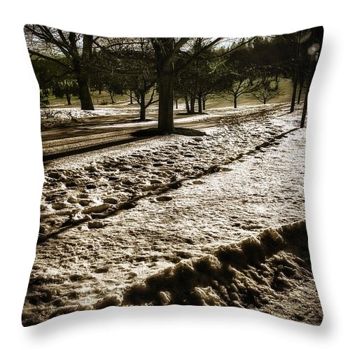 Winter Throw Pillow featuring the photograph Winter In The Berkshires by Madeline Ellis