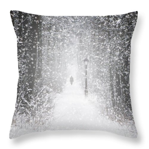 Landscape Throw Pillow featuring the photograph Snowing In The Forrest by Jaroslaw Blaminsky