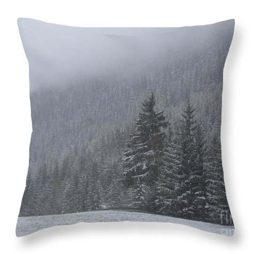 Landscape Throw Pillow featuring the photograph Winter In The French Alps by IE Rowe