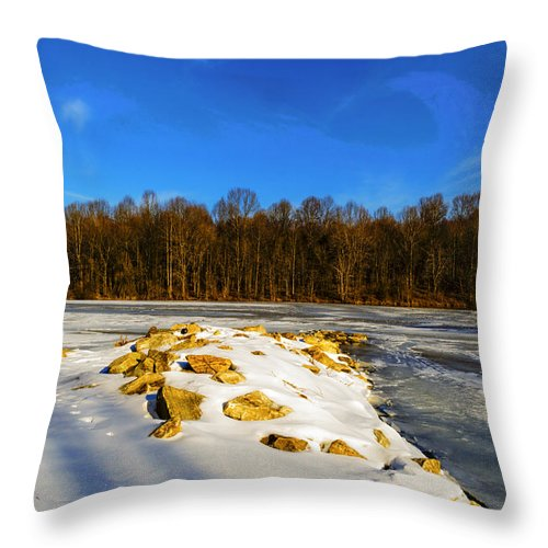 Winter Throw Pillow featuring the photograph Winter Landscape by AE Jones