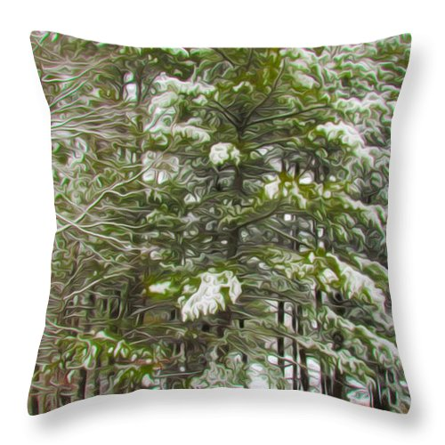 Background Throw Pillow featuring the painting Winter Landscapes by Jeelan Clark