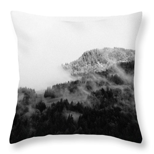 Landscape Throw Pillow featuring the photograph Winter Mist by Olivier De Rycke