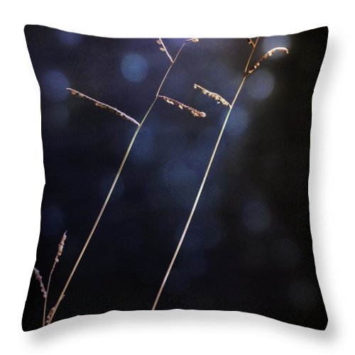 Plants Throw Pillow featuring the photograph Winter Mood by Eena Bo