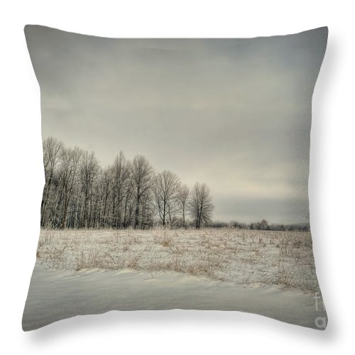 Winter Throw Pillow featuring the photograph Winter Morning by Pamela Baker
