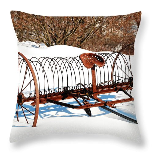 Deerfield Throw Pillow featuring the photograph Winter On The Farm by James Kirkikis