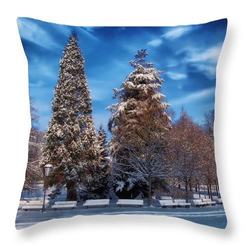 Landscape Throw Pillow featuring the photograph Winter Park by Mountain Dreams