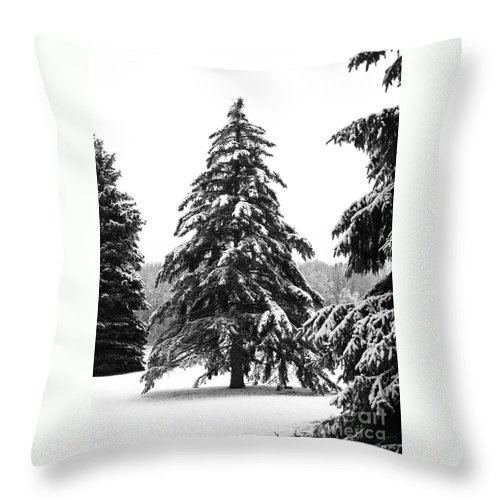 Winter Throw Pillow featuring the photograph Winter Pines by Ann Horn