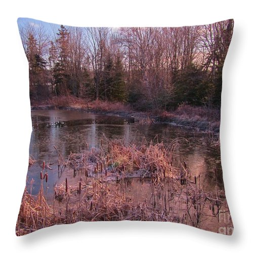 Winter Pond Landscape Throw Pillow featuring the photograph Winter Pond Landscape by John Malone