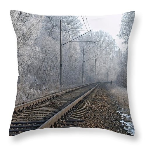 Train Throw Pillow featuring the photograph Winter Railroad by Martin Capek